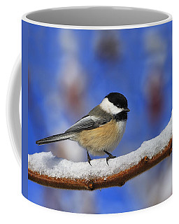 Black-capped Chickadee In Sumac Coffee Mug