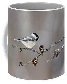 Coffee Mug featuring the photograph Black-capped Chickadee by Mircea Costina Photography