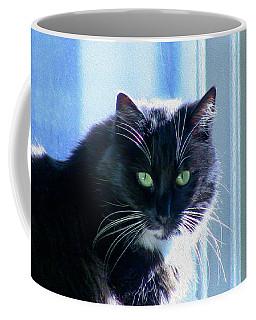 Black Cat In Sun Coffee Mug