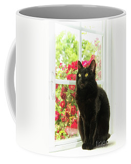 Black Cat In White Frames Coffee Mug