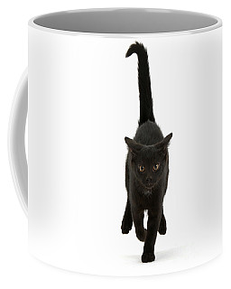 Black Cat On The Run Coffee Mug