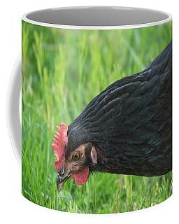 Black Chicken Coffee Mug