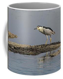 Black-crowned Night Heron 2017-2 Coffee Mug