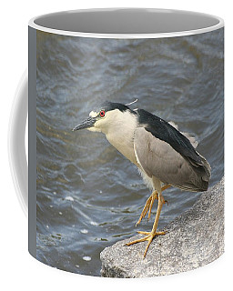 Coffee Mug featuring the photograph Black-crowned Night Heron by Doris Potter
