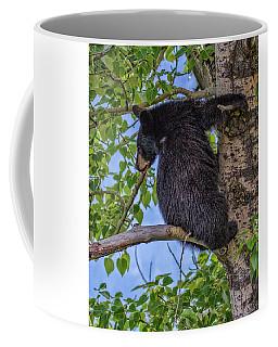 Black Cub Up A Tree Coffee Mug