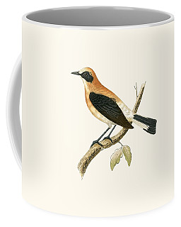 Black Eared Wheatear Coffee Mug
