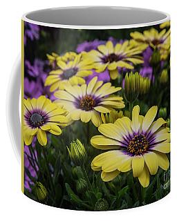 Black Eyed Susan Flowers-2215 Coffee Mug