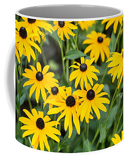 Black-eyed Susan Up Close Coffee Mug