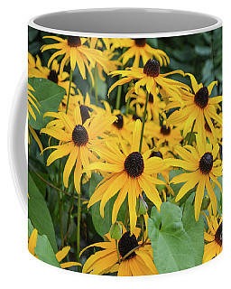 Black-eyed-susans Coffee Mug