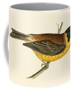Black Headed Bunting Coffee Mug