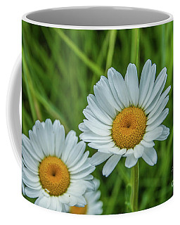 Black-headed Daisy's Coffee Mug