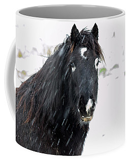 Black Horse Staring In The Snow Coffee Mug