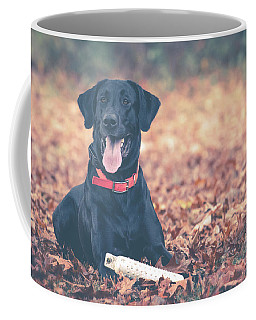 Black Labrador In The Fall Leaves Coffee Mug