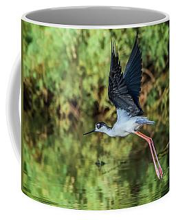 Black-necked Stilt 4687-091017-2cr Coffee Mug