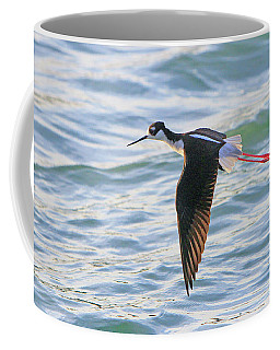 Black-necked Stilt 8 Coffee Mug