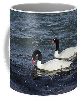 Black-necked Swans Coffee Mug