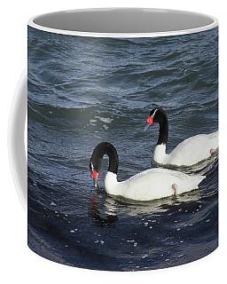 Black-necked Swans Coffee Mug