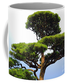 Black Pine Japan Coffee Mug by Susan Lafleur