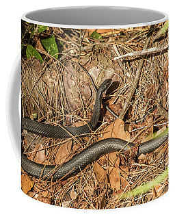 Black Racer At Crowley Coffee Mug