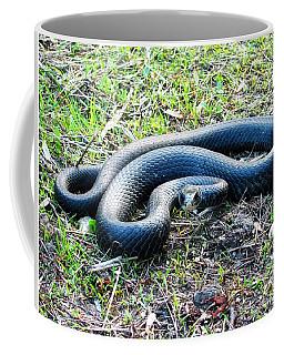 Black Racer Coffee Mug