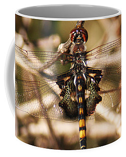 Coffee Mug featuring the photograph Black Saddlebags Dragonfly by William Selander