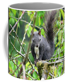 Black Squirrel In The Cherry Tree Coffee Mug
