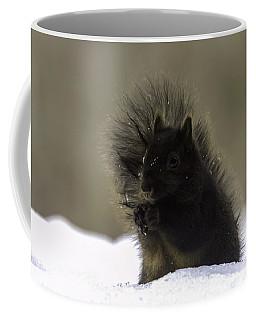 Black Squirrel Coffee Mug