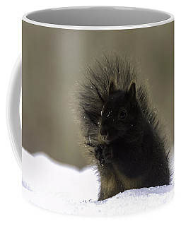 Black Squirrel Coffee Mug