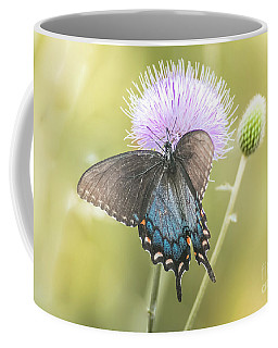 Black Swallotail Butterfly In Thistle Coffee Mug