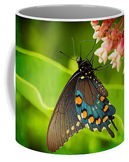 Black Swallowtail #1 Coffee Mug