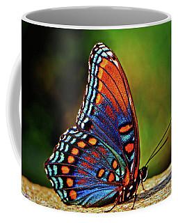 Black Swallowtail Butterfly 009 Coffee Mug