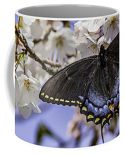 Black Swallowtail Butterfly Coffee Mug