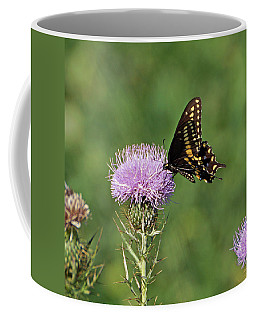 Coffee Mug featuring the photograph Black Swallowtail Butterfly by Sandy Keeton