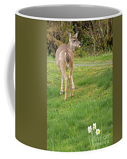 Black Tail Deer Coffee Mug