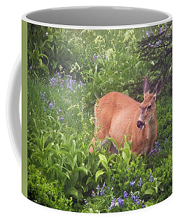 Black Tail Deer, Mt Rainier Forest Coffee Mug by Greg Sigrist