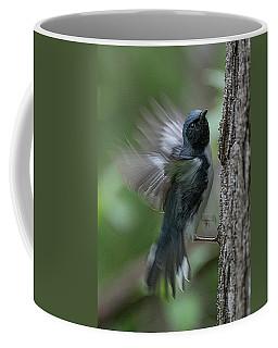 Black Throated Blue #1 Coffee Mug