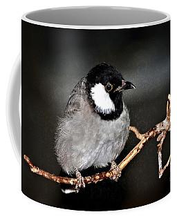 Black Throated Laughing  Thrush Coffee Mug by Elaine Manley