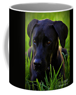 Black Velvet Coffee Mug by Clare Bevan