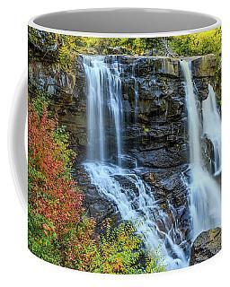 Black Water Falls #3 Coffee Mug