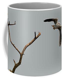Black-winged Kite Coffee Mug by Manjot Singh Sachdeva