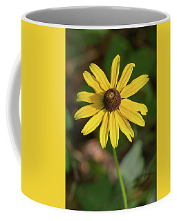 Blackeyed Susan Coffee Mug