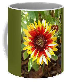 Blanketflower Coffee Mug