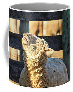 Bleating Sheep Coffee Mug