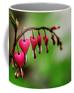 Coffee Mug featuring the photograph Bleeding Hearts Flower Of Romance by Debbie Oppermann