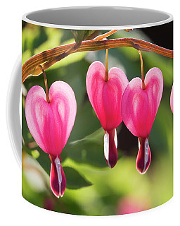 Bleeding Hearts Coffee Mug by Skip Tribby