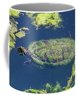 Coffee Mug featuring the photograph Blending In Turtle by Raphael Lopez