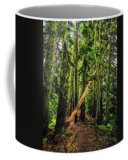 Blocked Trail Coffee Mug
