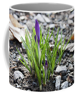 Coffee Mug featuring the photograph Bloom Awaits by Jeff Severson