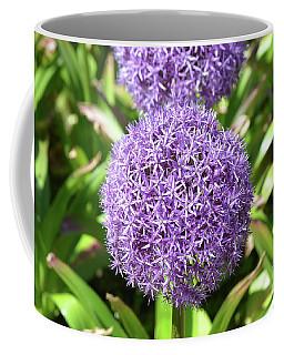 Blooming Allium Flowers In A Garden Coffee Mug by DejaVu Designs