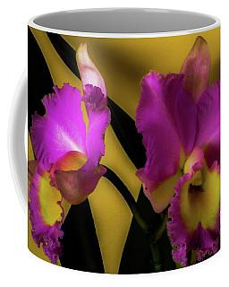 Blooming Cattleya Orchids Coffee Mug